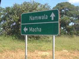 Macha_Sign
